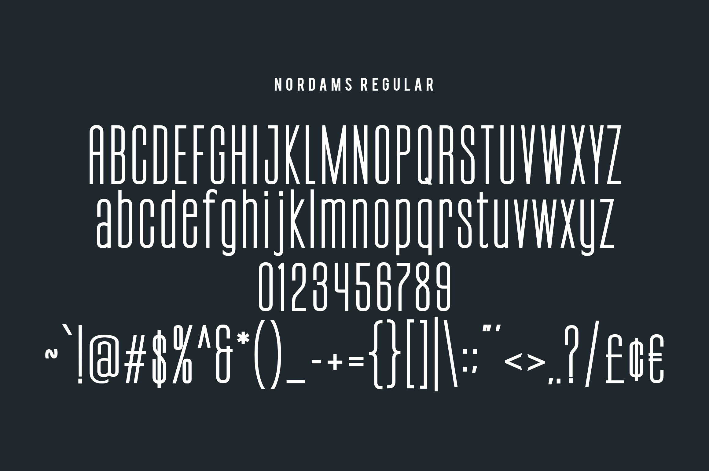 NORDAMS - Sans Serif example image 14