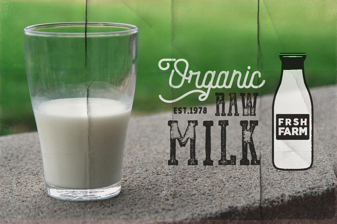 Organic Farm & Eco Food Badges example image 2