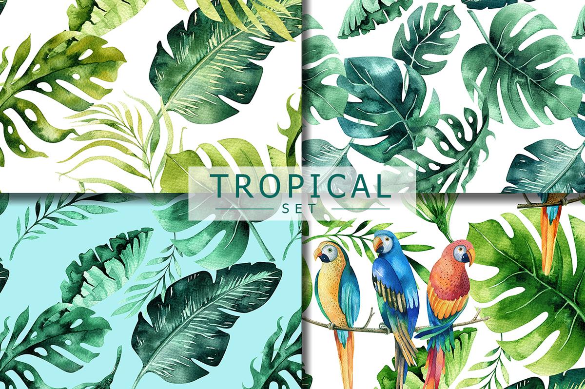 Tropical set I example image 2