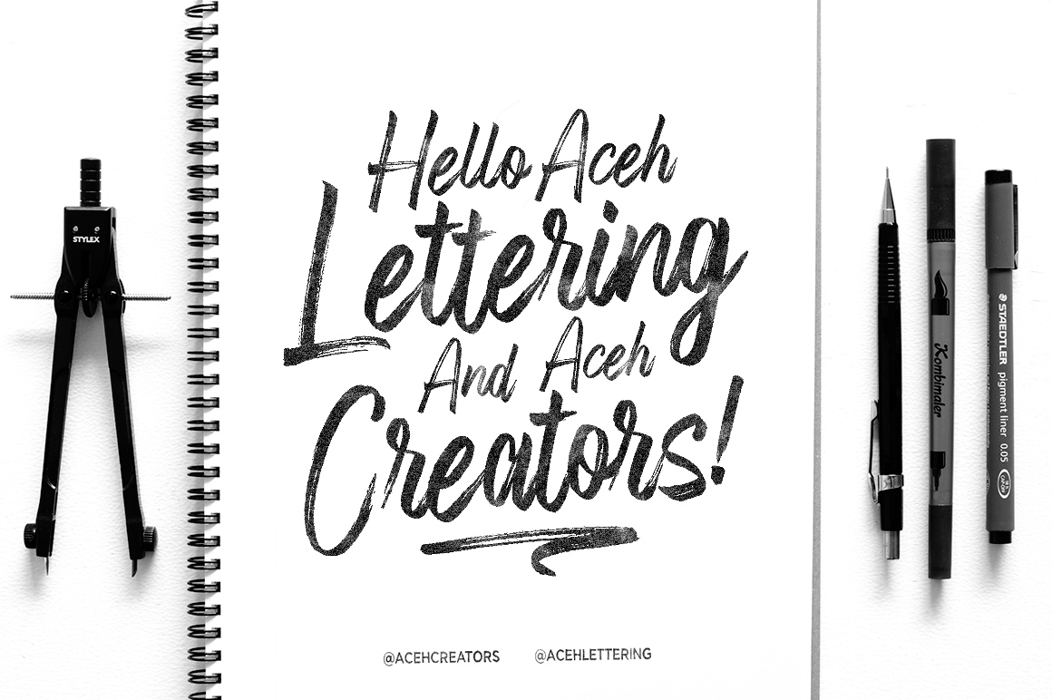 Fronds Getturing Brush Font example image 5