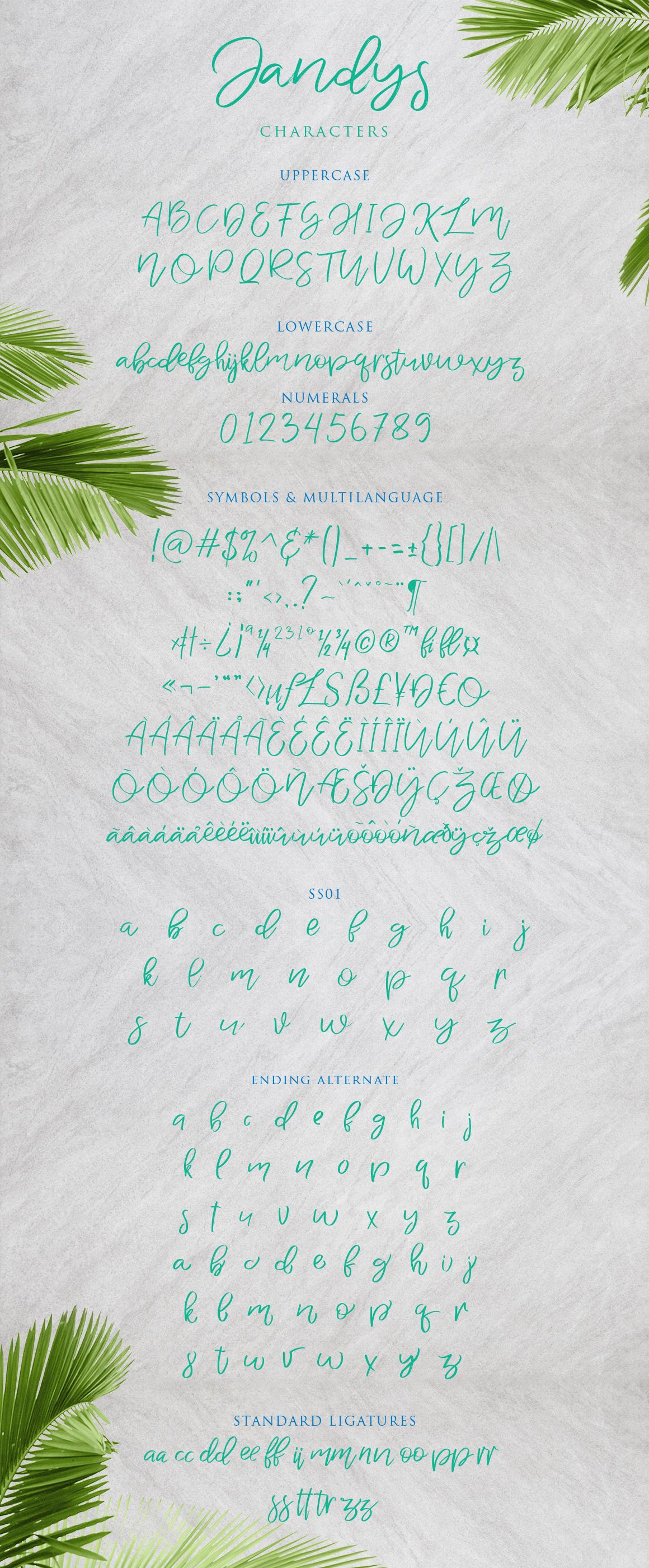 Jandys Typeface example image 10