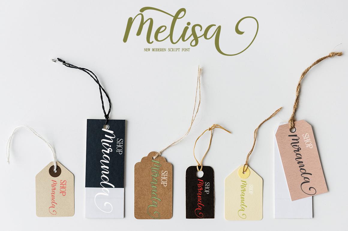 melisa script example image 3