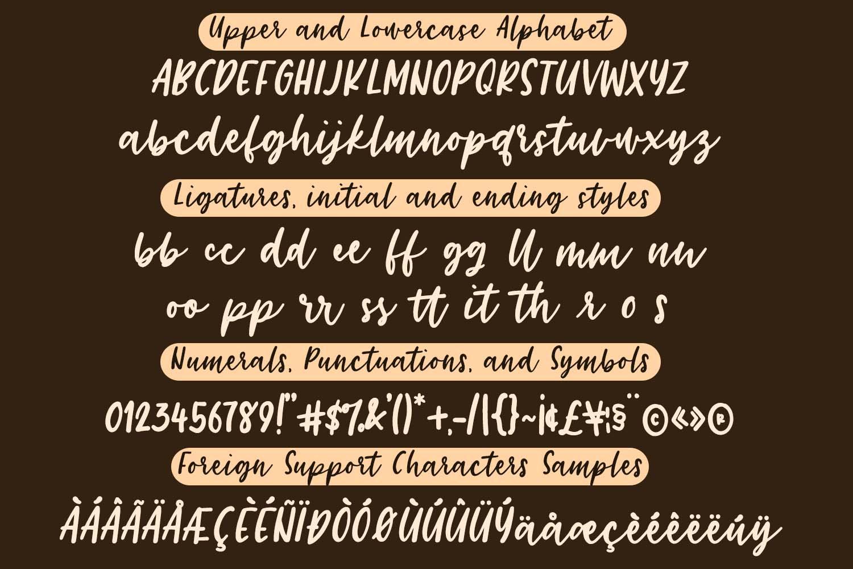 Choco Vanilla Handwritten Script Typeface example image 5