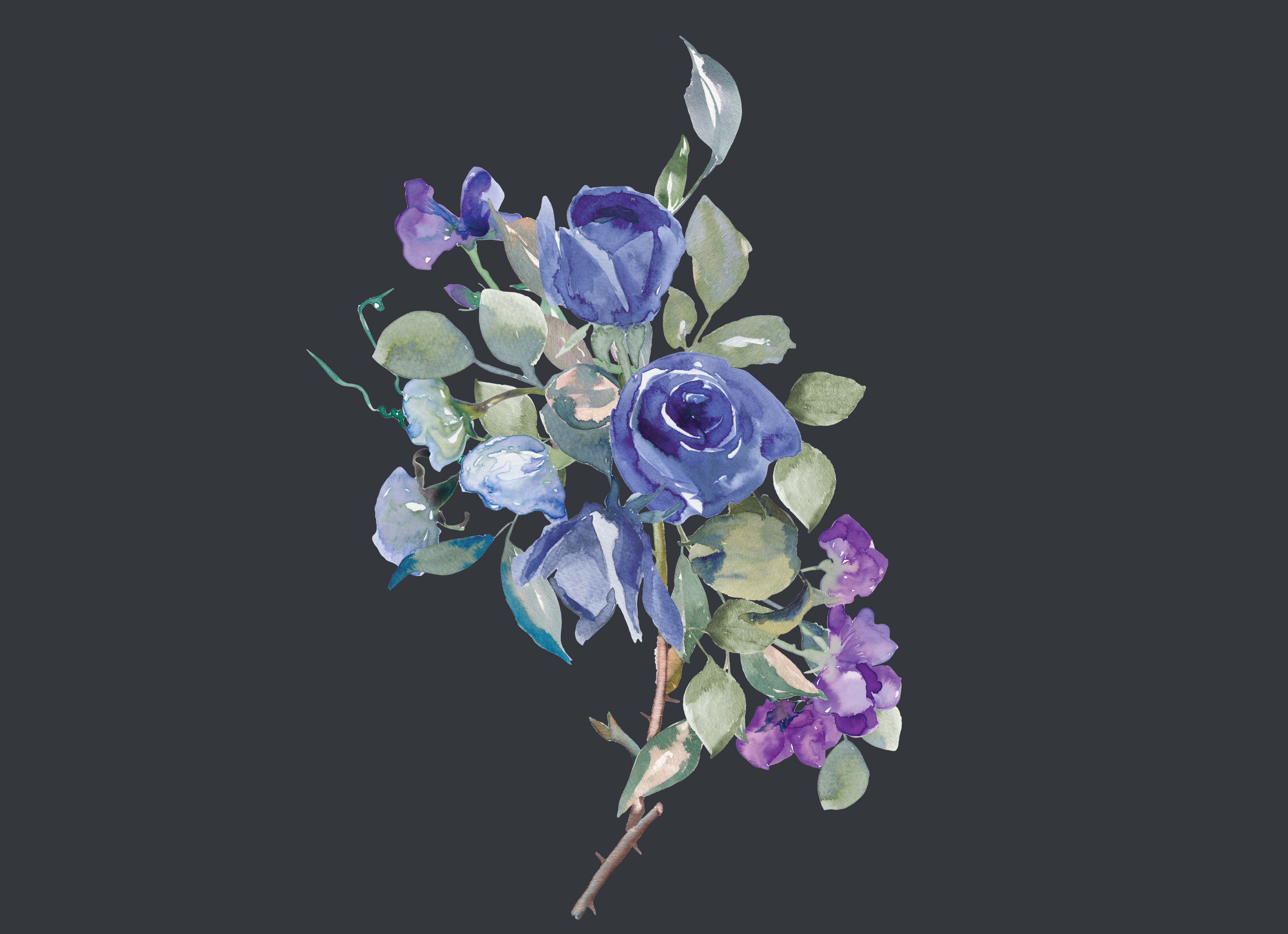 Watercolor Purple And Blue Flowers Clipart