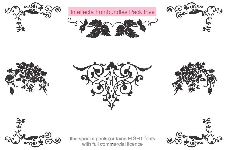 Intellecta Fontbundles Pack Five example image 2