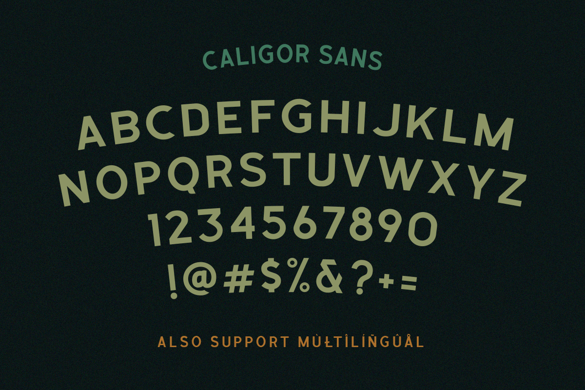 CALIGOR - Display Typeface example image 5