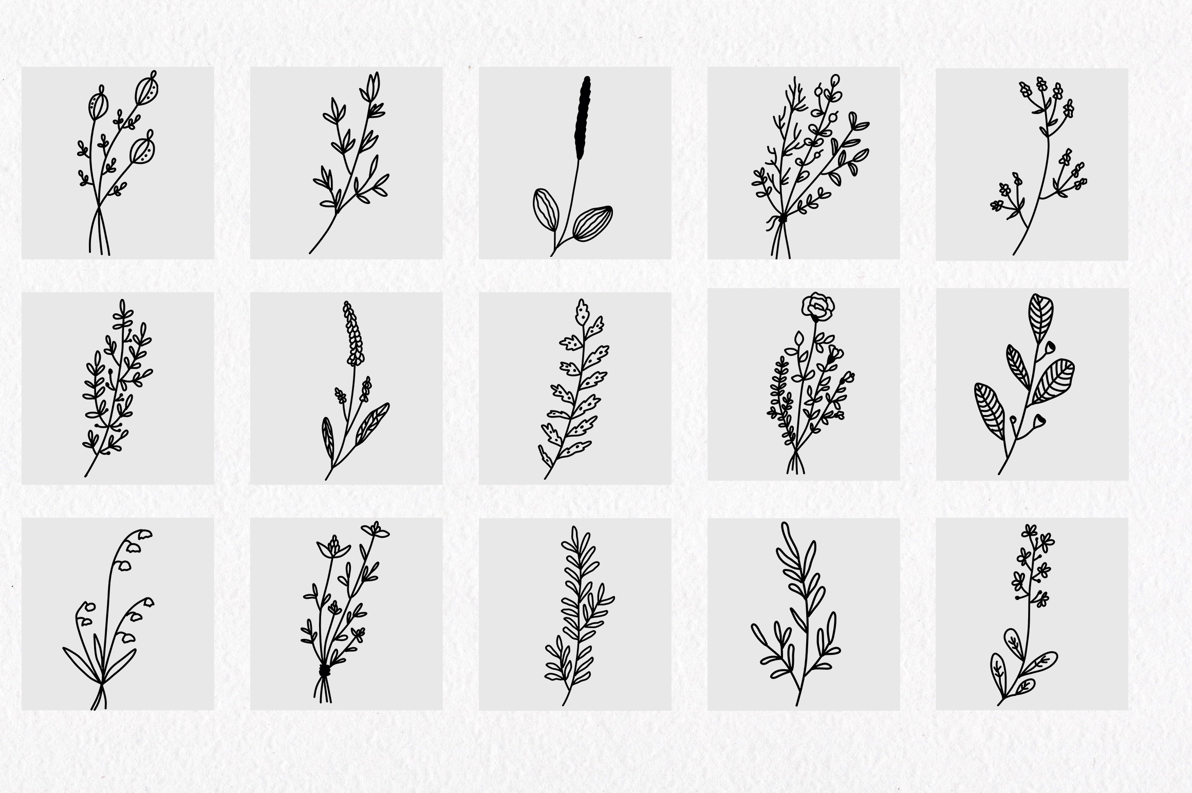 Floral and herbal elements. Hand drawn botanical art. example image 5