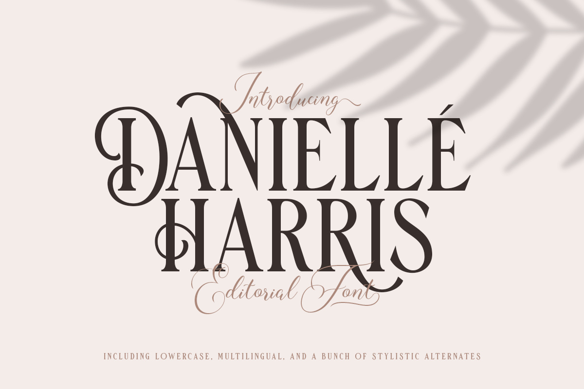 Danielle Harris - Editorial Font example image 1