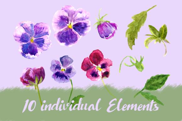 Watercolor Pansies Cip Art Set - Bonus Wreath and Border example image 2