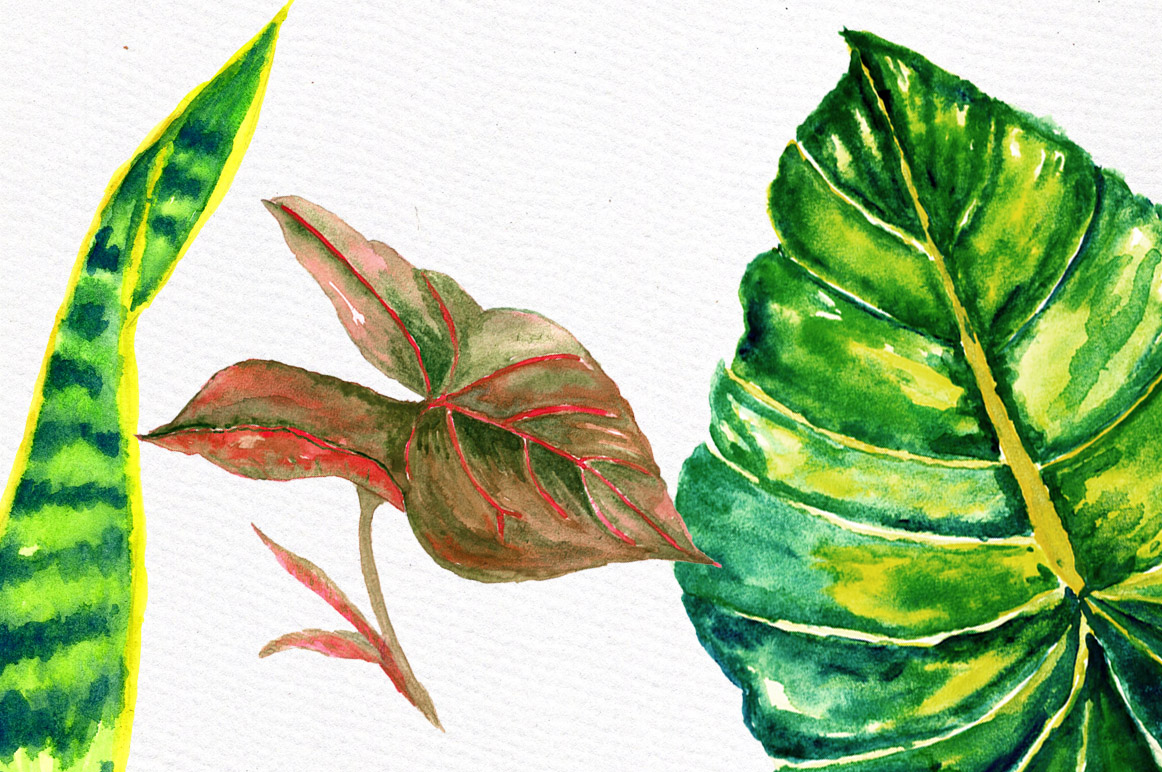 Tropical watercolor leaves example image 5