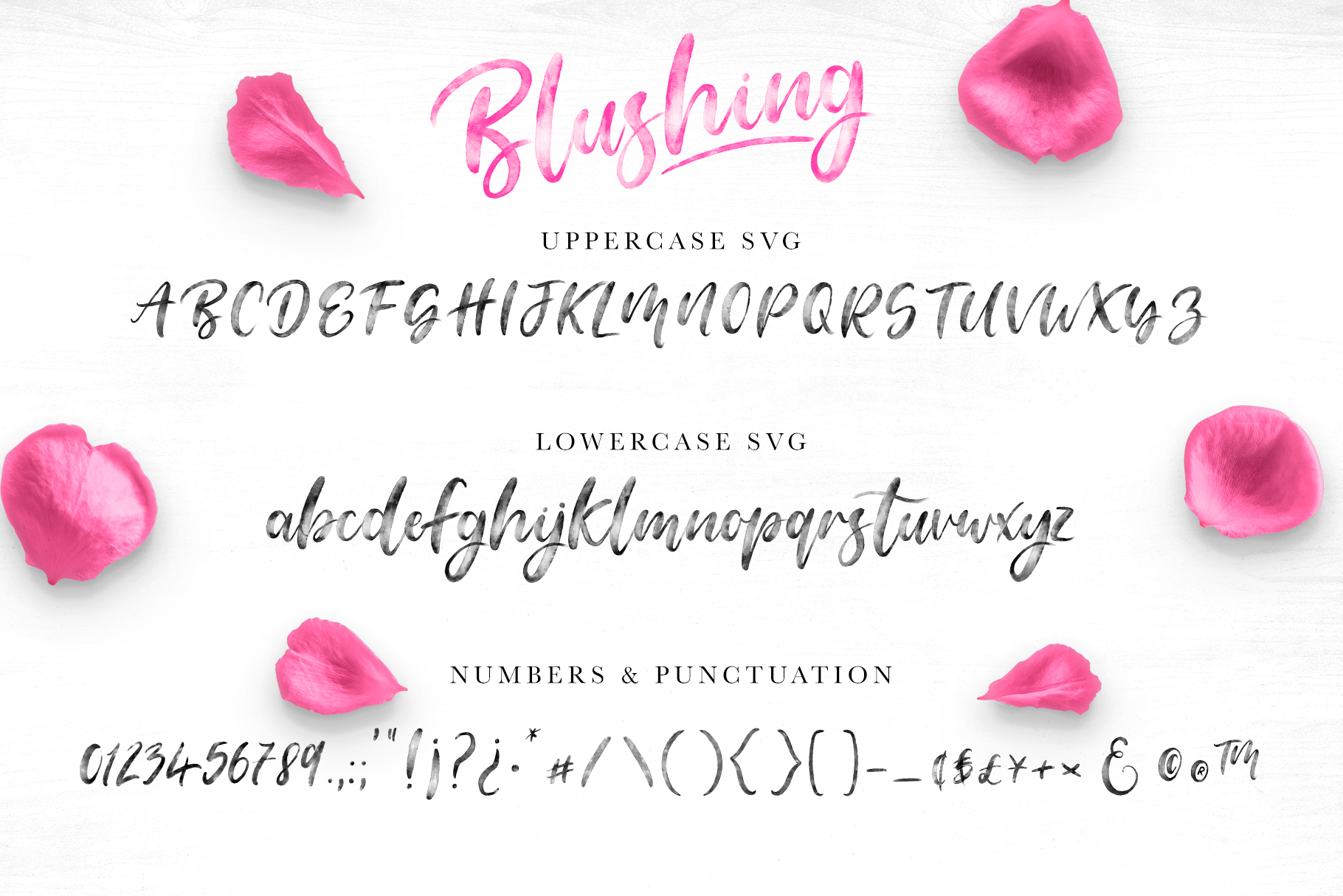 Blushing Script - SVG Font example image 5
