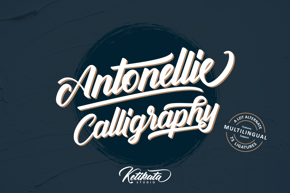 Antonellie Hand Lettered Script example image 2