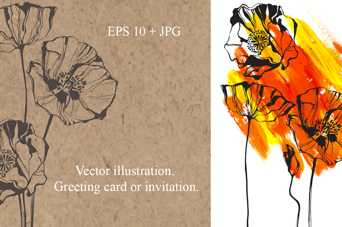 Poppy. Vector collection. example image 3