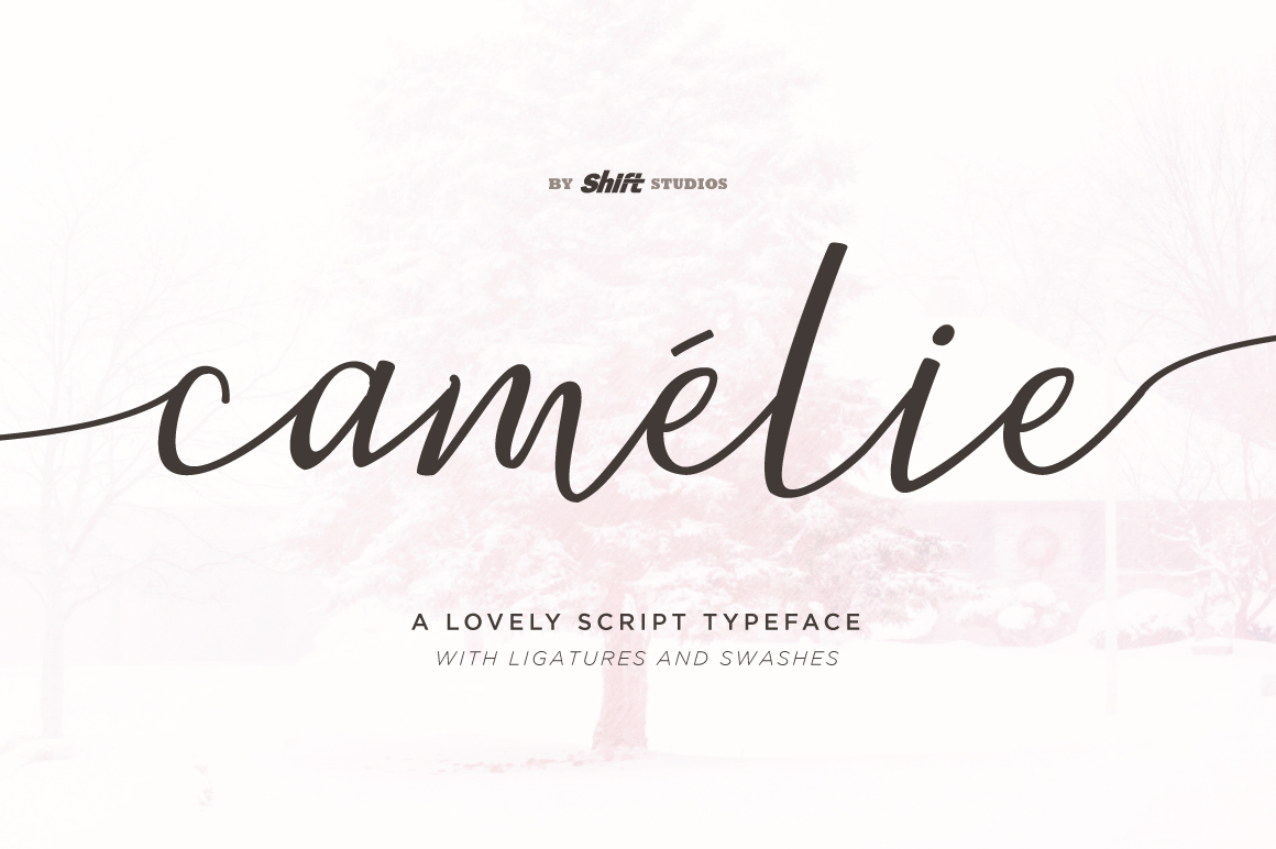 Camelie Typeface example image 1