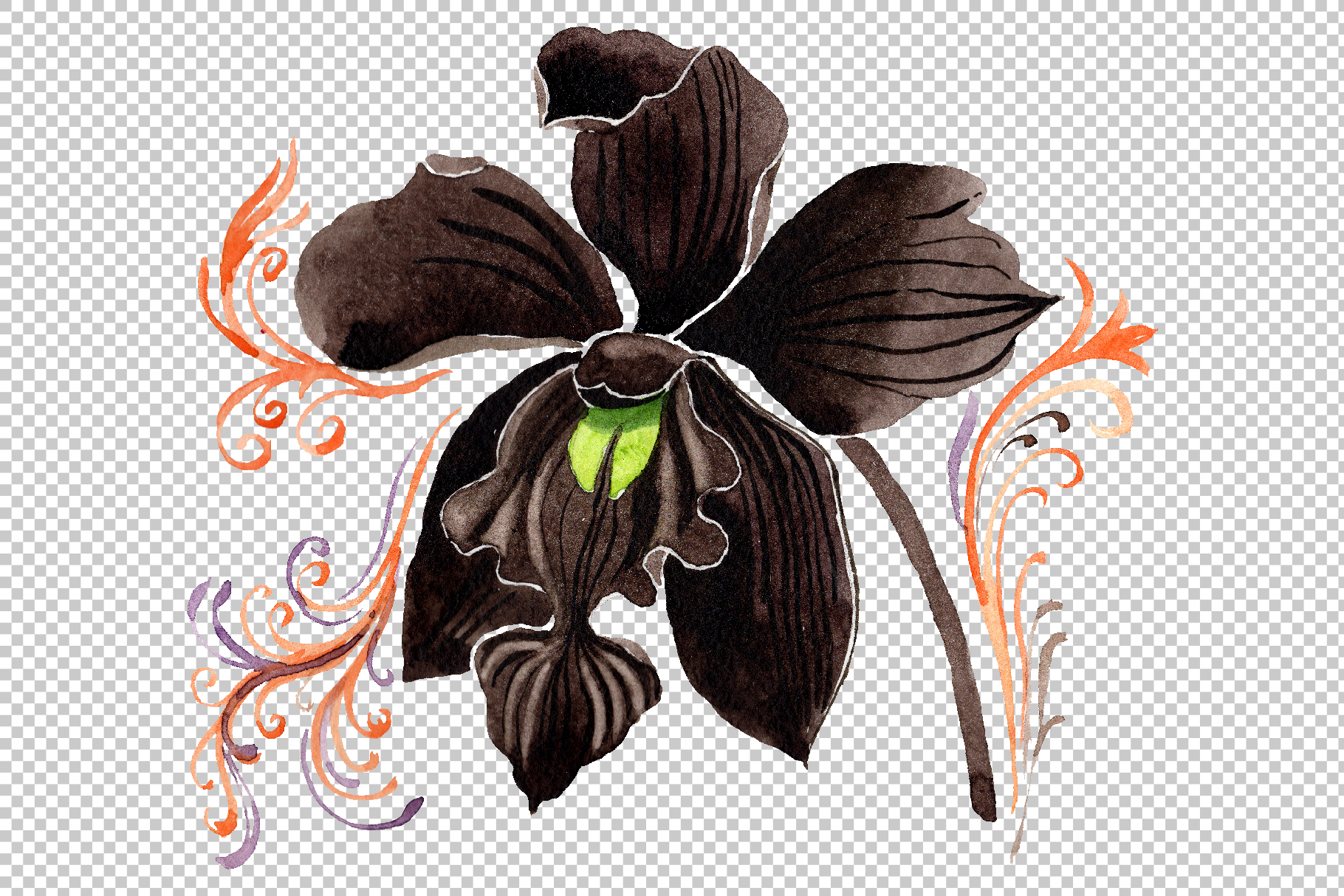 Orchid black Watercolor png example image 3