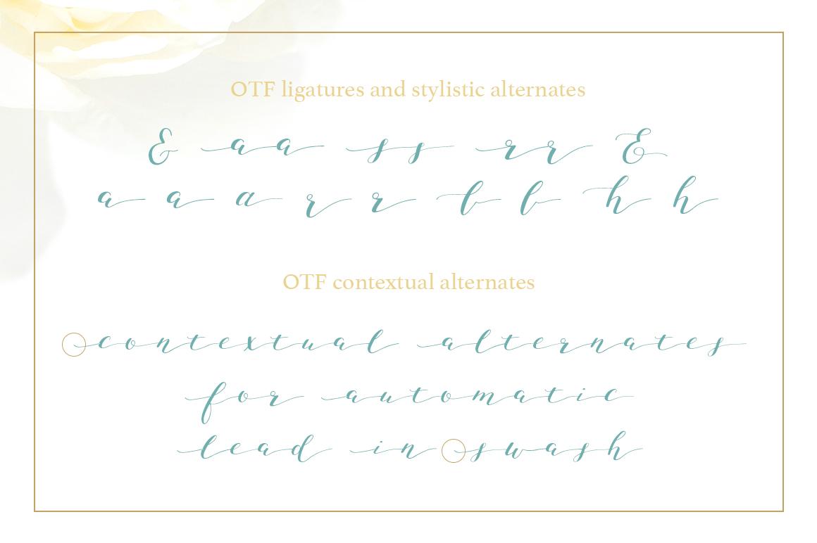 Joleni Font - modern elegant calligraphy example image 11