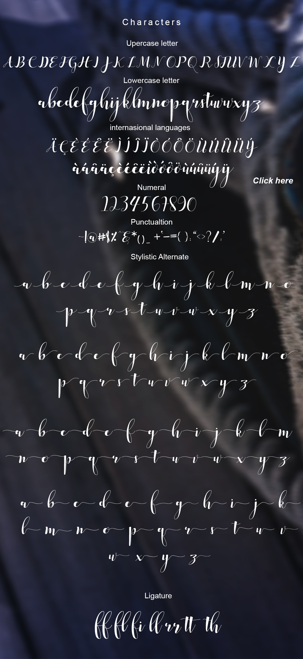 median script example image 5