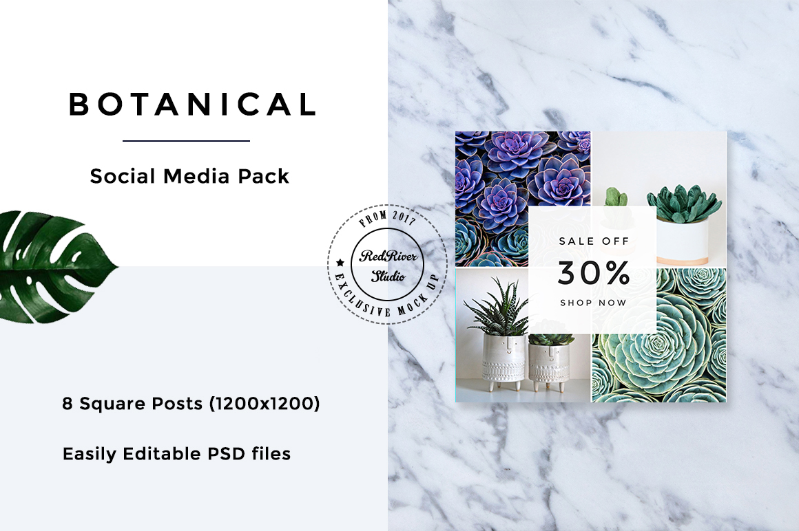 Botanical Social Media Pack example image 4