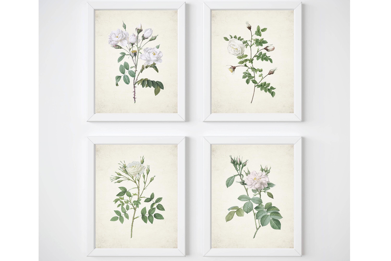White Rose Print, Set of 4 Wall Art, Living Room Print Set example image 1