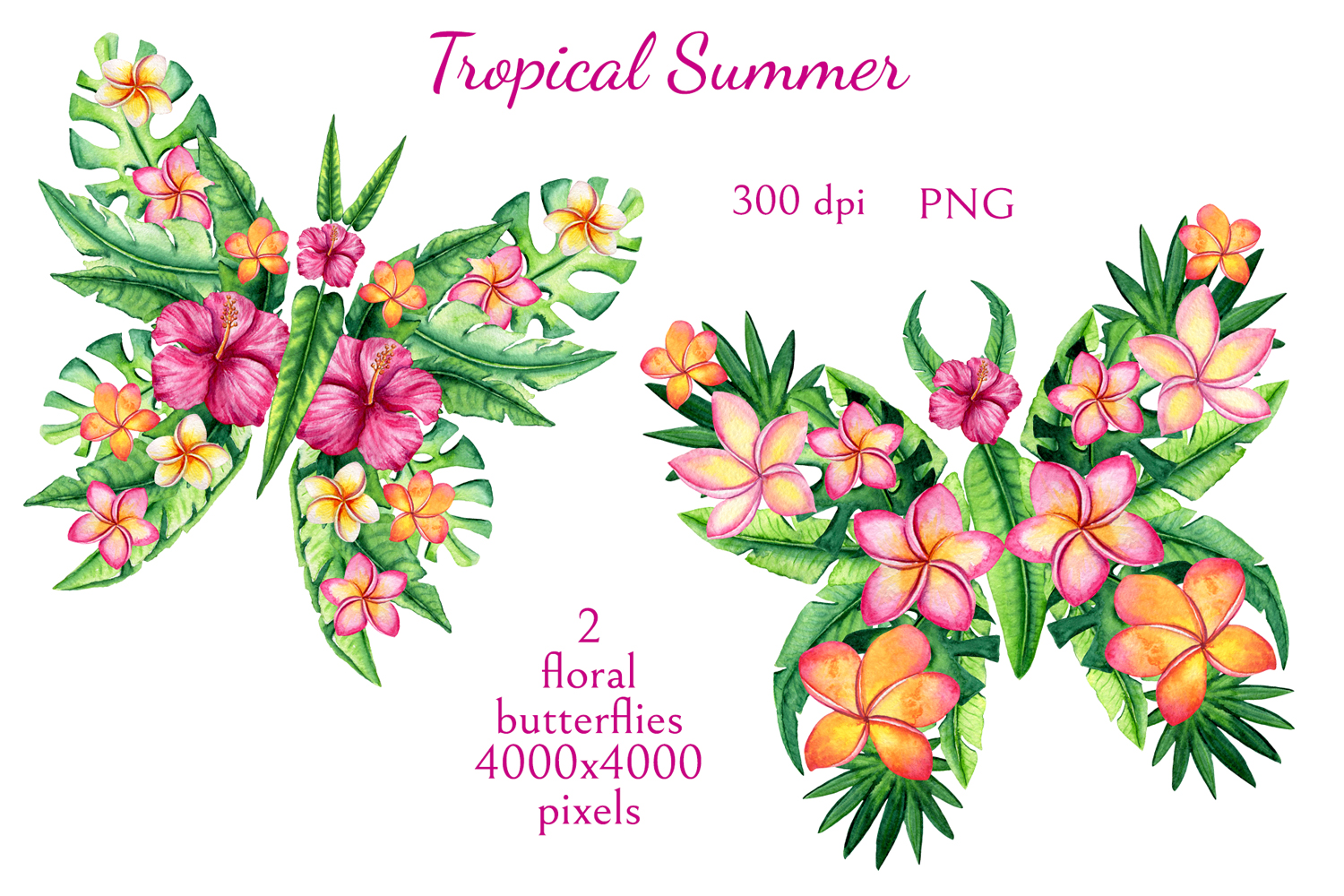 Tropical Summer example image 5