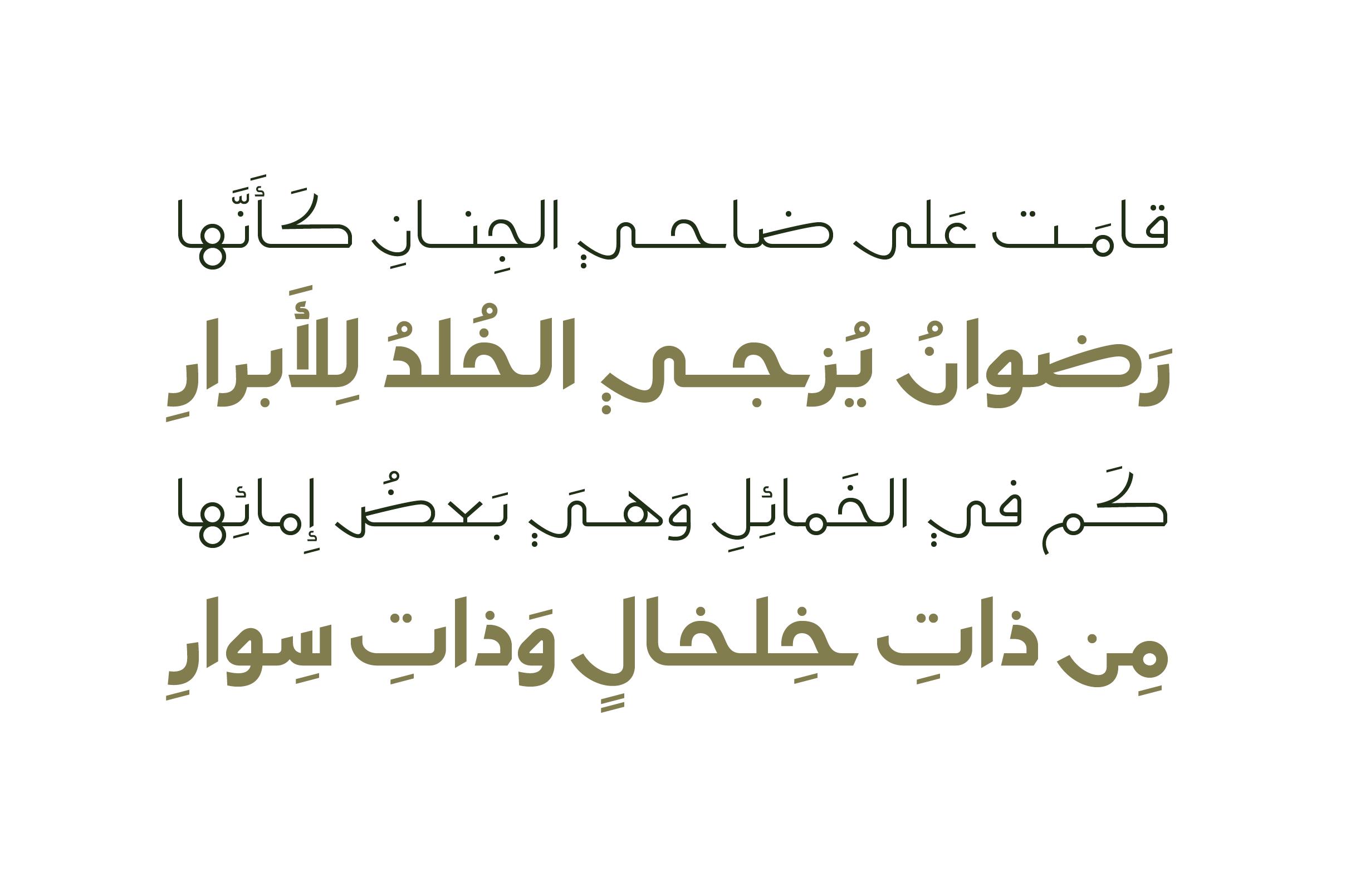 Moltaqa - Arabic Typeface example image 6