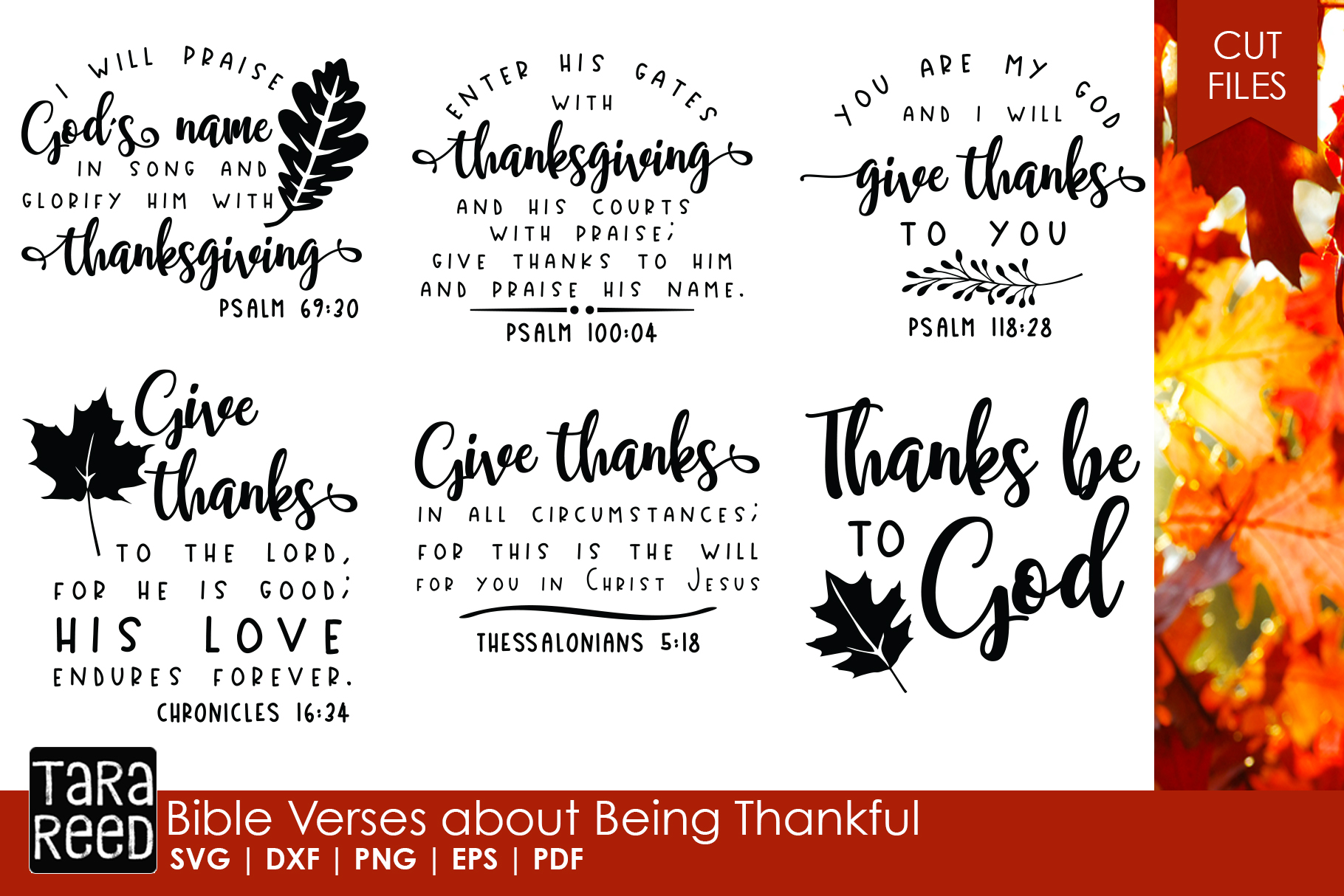 Bible Verses about Being Thankful example image 1