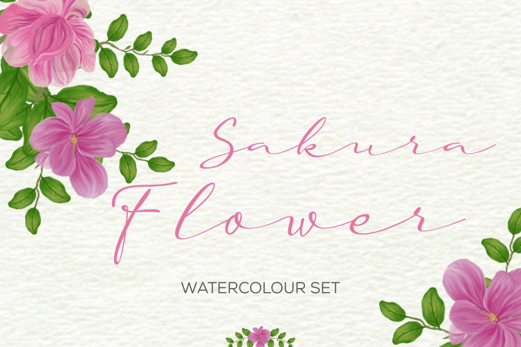 Sakura Flower Watercolour example image 1