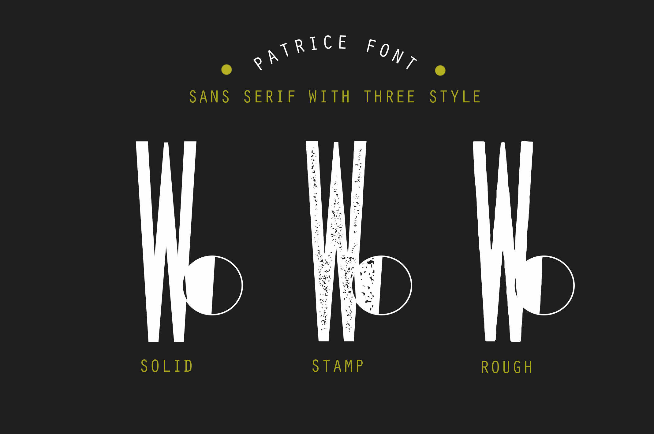 Patrice | Sans Serif Font example image 4