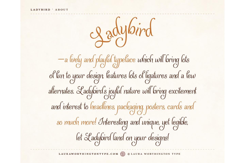 Ladybird example image 4