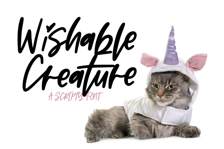 Wishable Creature example image 1