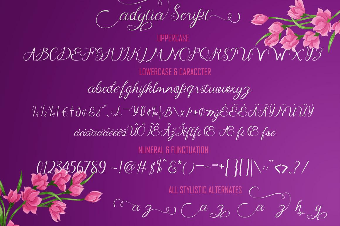 Adytia Script example image 2