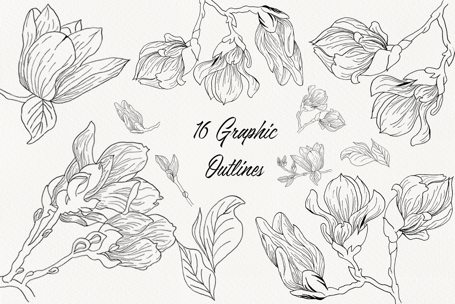 Magnolia Bloom example image 9