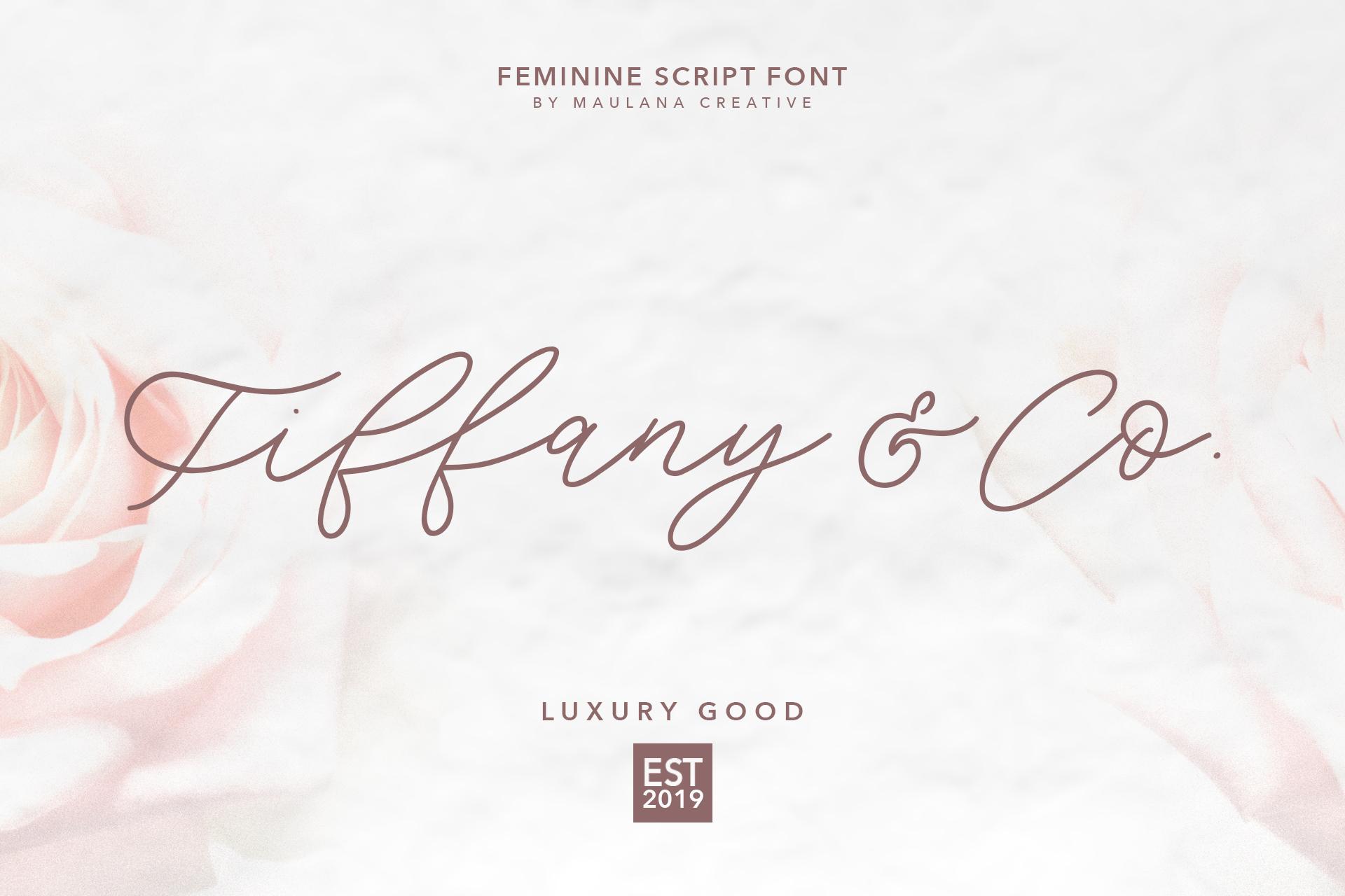 Southwide Feminine Script Font example image 2