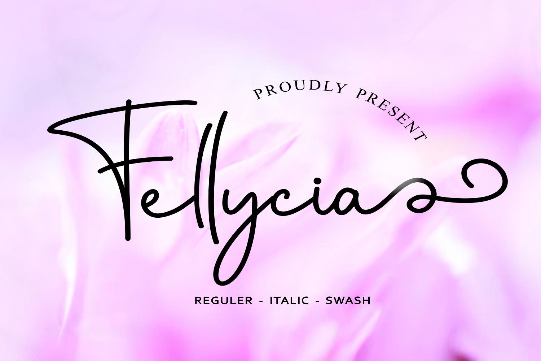 Fellicya Stylish Font example image 1