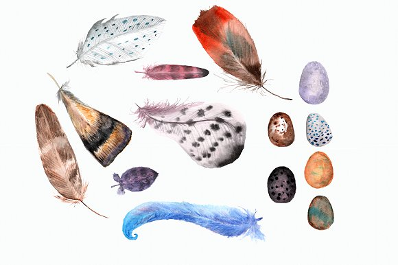 Watercolor Feathers & Eggs Clip Art example image 2
