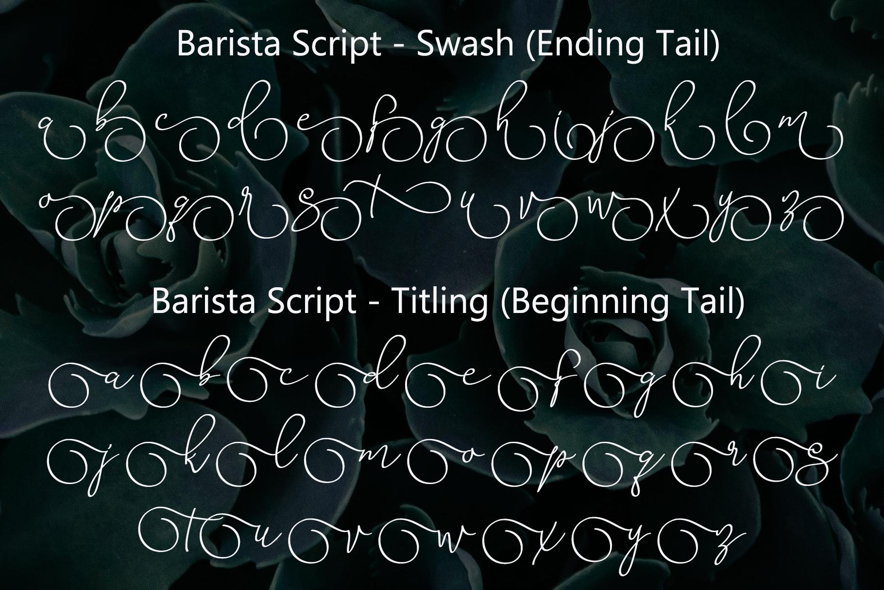 Barista Script Font example image 7