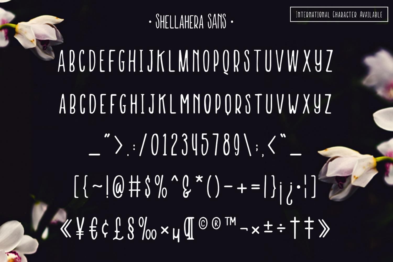 Shellahera Font Bundle example image 7