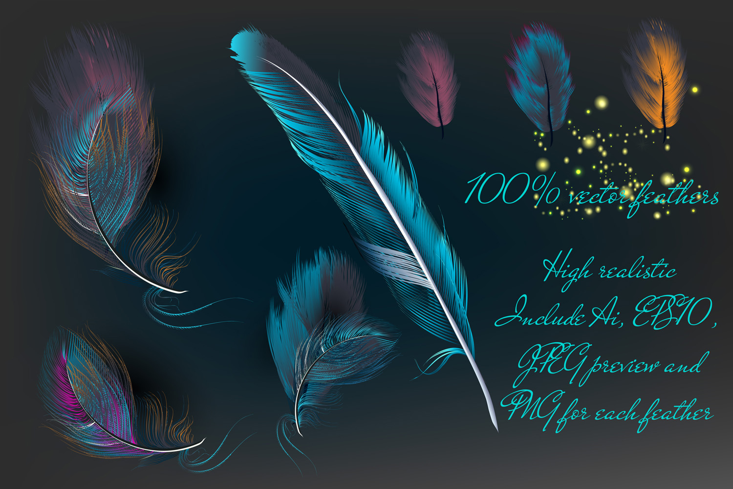 Feathers set. Vector ClipArt example image 2