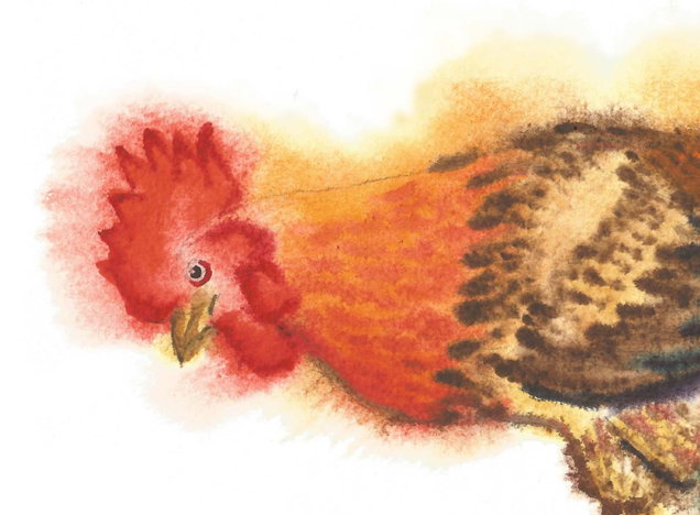 Watercolor Roosters example image 3