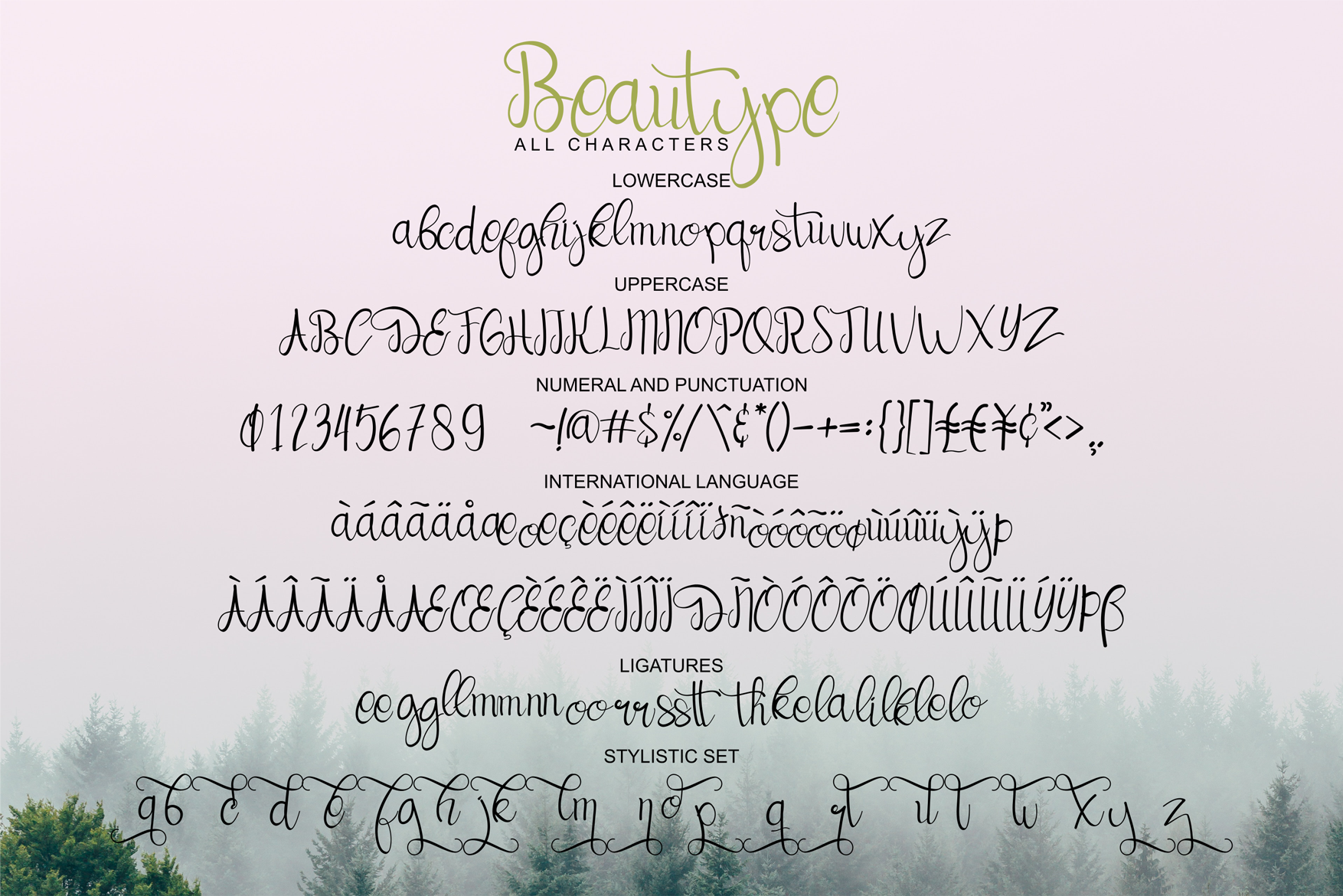 Beautype - Simple Script Font example image 10