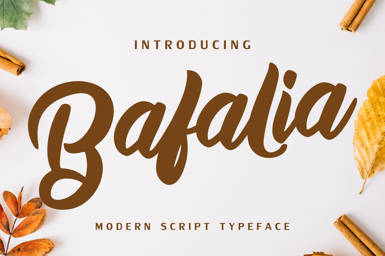 Bafalia - Modern Script Font example image 1