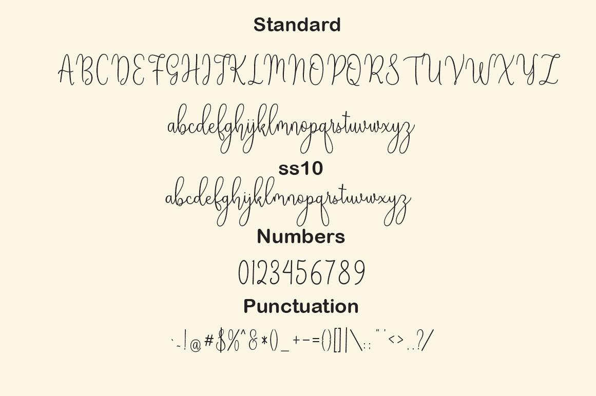 Penguin Script example image 4