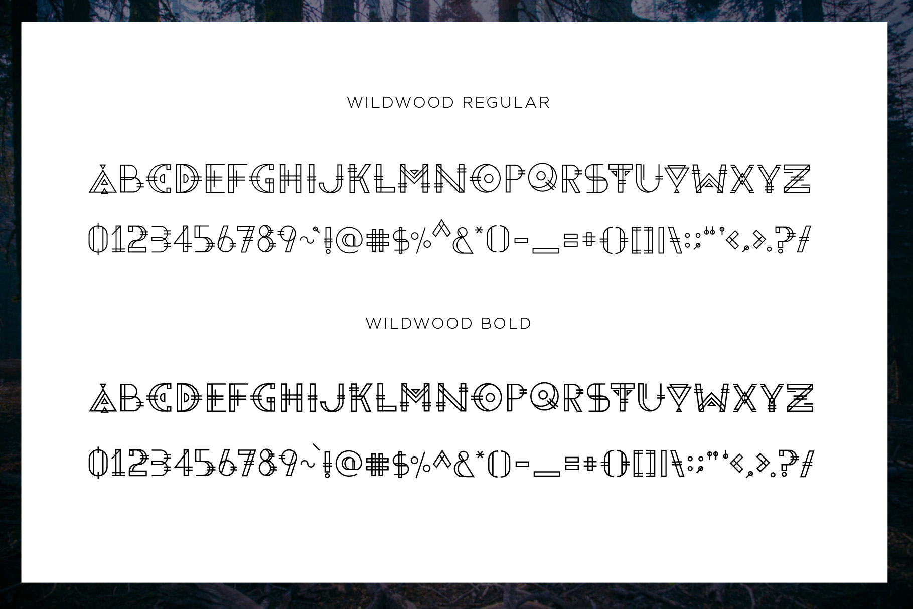 Wild Wood Font & Extras example image 2
