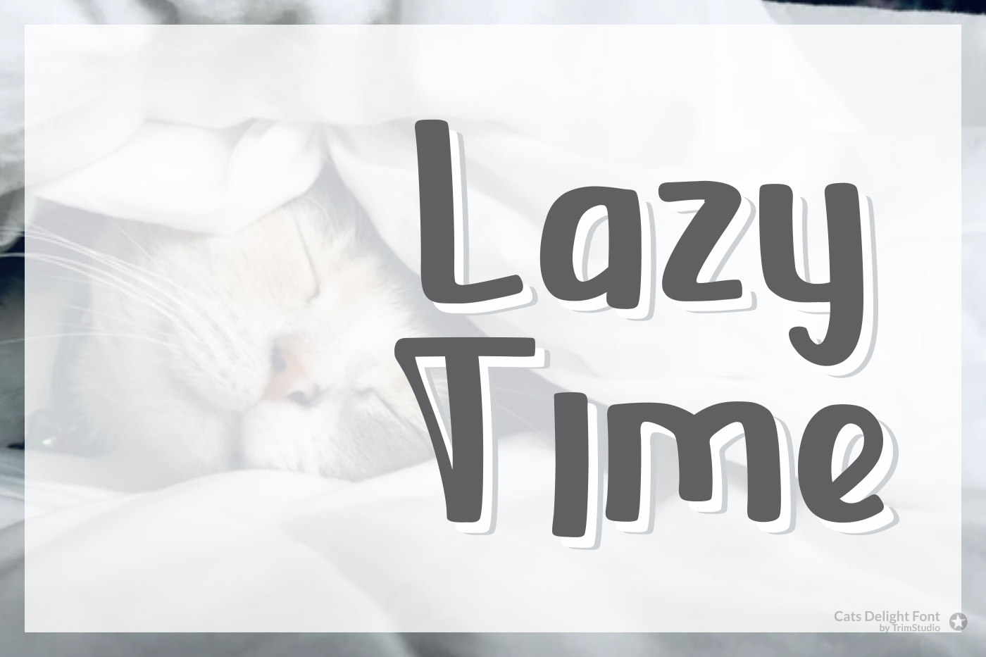 Cats Delight - Cat Display Font example image 3