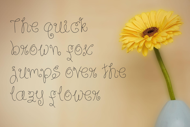 Sky Flower - Handwritten Font example image 3