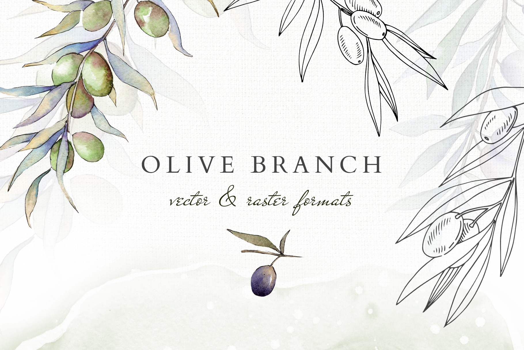 Olive branches collection Watercolor png example image 1