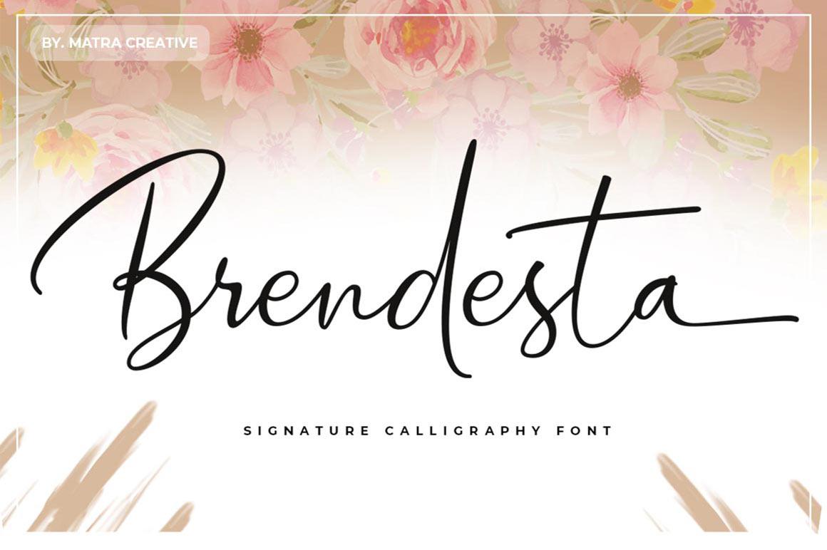 Amazing Bundles Fonts example image 13