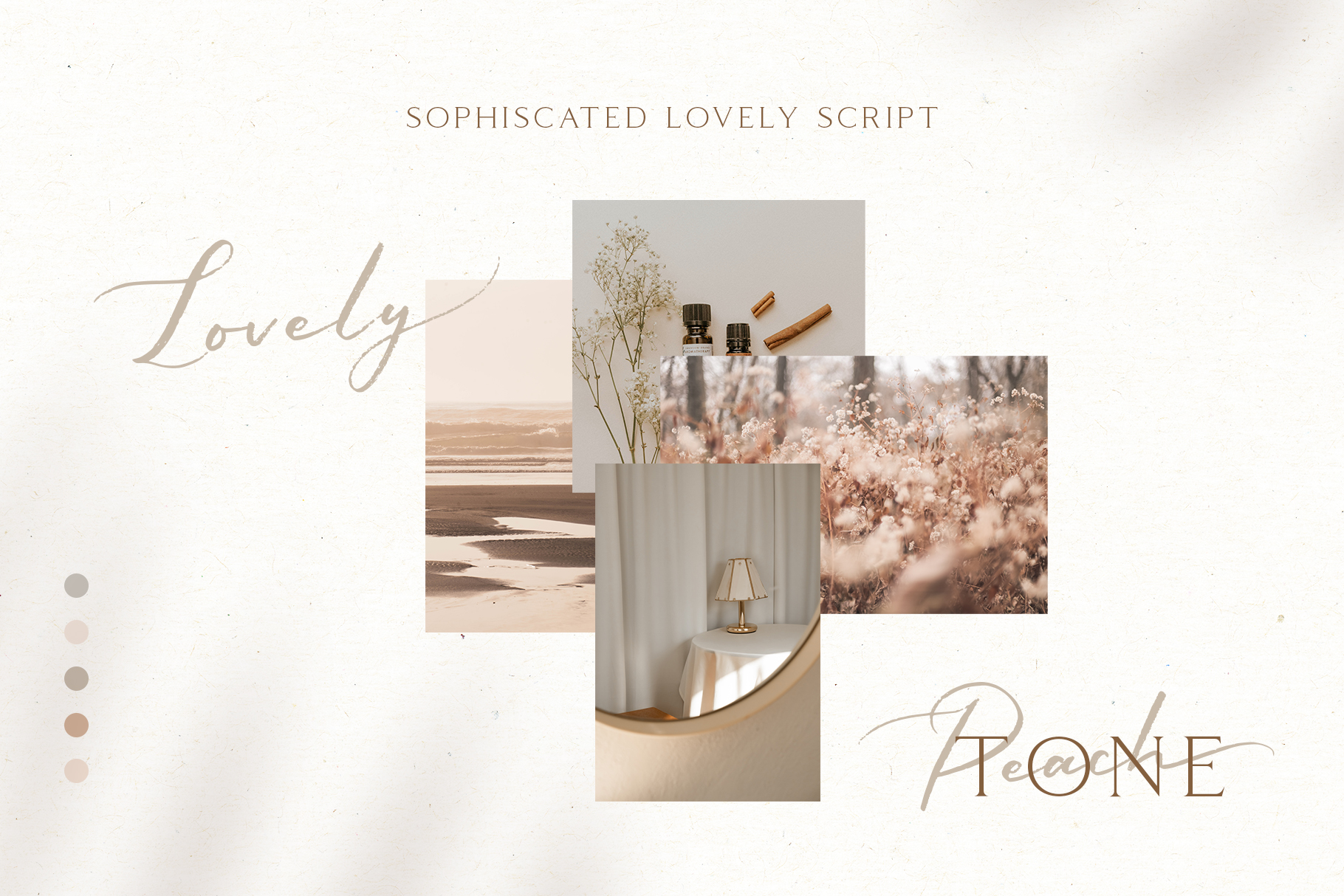 Sophiscated - A Lovely Script Font example image 9