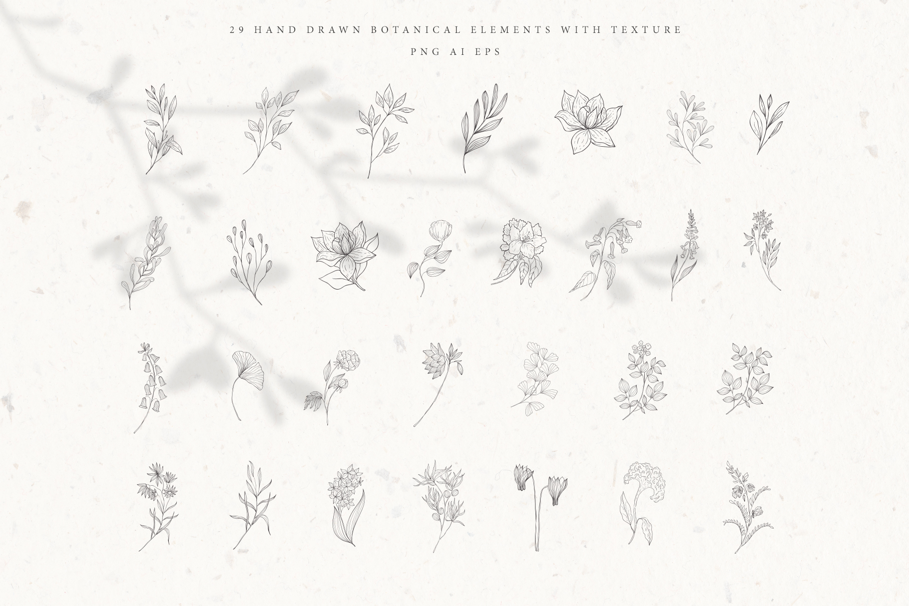Botanical Alphabet and Monograms. example image 6