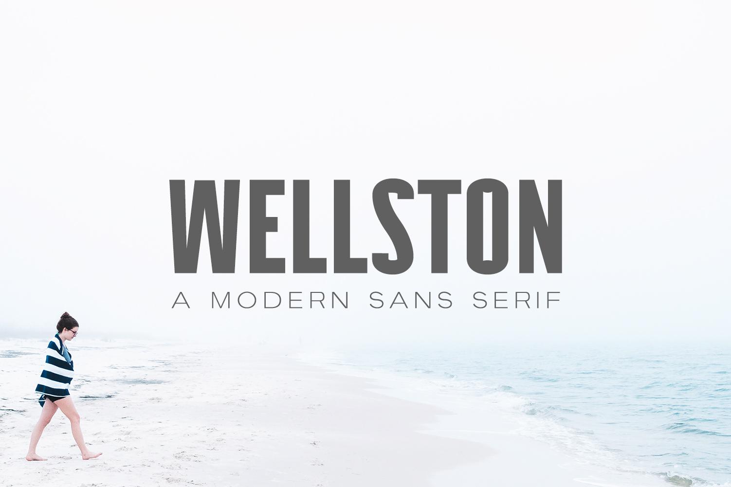 Wellston Modern Sans Serif Font Family example image 1